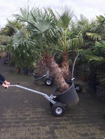 Transportkar PMM voor de grotere pot