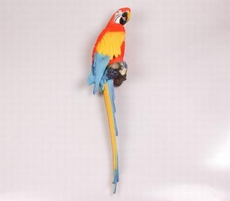Wandpapegaai 74 cm Rood